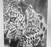 Leopard by EmilyLouiseLong