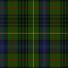 10015 Stewart Hunting Clan Tartan Fabric Print Ipad Case by Detnecs2013