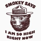 Smokey The Bear - I am so high right now by Bundjum