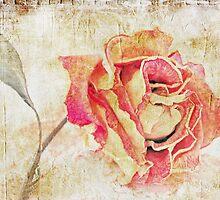 Silent Memories by Susan Werby