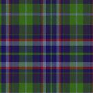 02332 Riverside County, California District Tartan Fabric Print Iphone Case by Detnecs2013