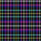 02342 Alameda County, California District Tartan Fabric Print Iphone Case by Detnecs2013