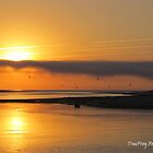 Birds, boat & sunrise by TheWanderer27