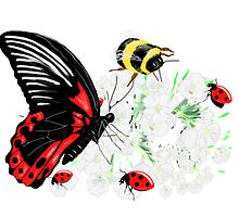 Red Black Butterfly Art by LeahG by LeahG Artist