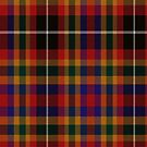 02372 Mecklenburg County, North Carolina District Tartan Fabric Print Iphone Case by Detnecs2013