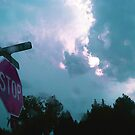 Stop Sign  by savinggrace711