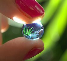 Bubble by junotunes