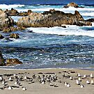 """Gathering On The Beach"" by Gail Jones"
