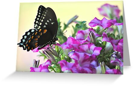 Here come the butterflies... by DottieDees