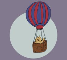Hot air balloon - colourised version by Elvedee