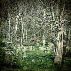 Graveyard With A Past by Thomas Young