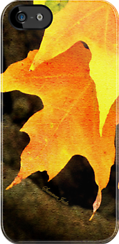 Autumn Maple ~ iPhone Case by SummerJade