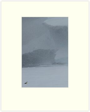 Antarctic Snowstorm by barrach
