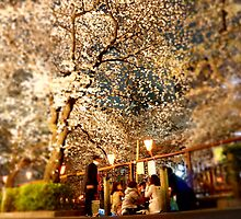 Sakura Viewing at Night (Yozakura) by kianhwee