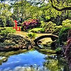 Japanese tea garden, Bontanical Gardens, Brooklyn, New York by fauselr