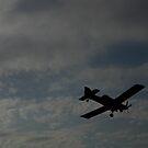 Fly In The Sky by WildestArt
