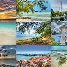 "Photographic Art Book & Educational Project ""Islands of The Bahamas"" by 242Digital"