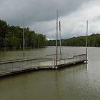 Cook's Lake- White River, Arkansas by WildestArt