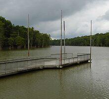 Cook's Lake- White River, Arkansas by WildestArt