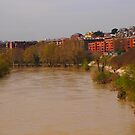 Bend of the River Tiber in central Rome by orsinico