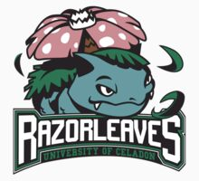 Univ. of Celadon City Razorleaves by BabyJesus
