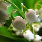 Miniature Muguet Bells by MarianBendeth