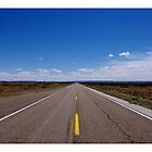 Road Less Traveled by scottmarla