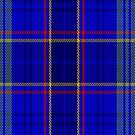 02389 Dempster Tartan Fabric Print Iphone Case by Detnecs2013