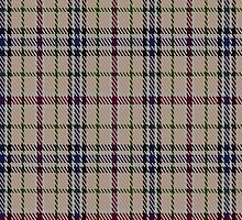 02391 Desang Tartan Fabric Print Iphone Case by Detnecs2013