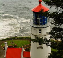 Heceta Head Lighthouse by Barbara  Brown
