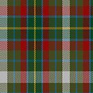 02397 Devon Rural Skills Trust Tartan Fabric Print Iphone Case by Detnecs2013