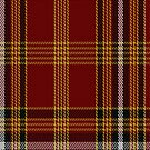 02400 DeWolfe Tartan Fabric Print Iphone Case by Detnecs2013