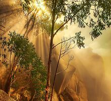 Cliff face in mist, Mount Buffalo by Kevin McGennan