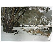A seat in the snow Poster