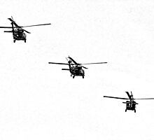 Tricopters by Annie Choquette