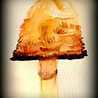 Water color mushroom. by Livvy Young