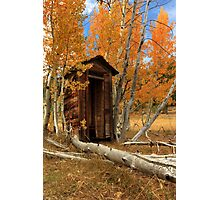 Outhouse In The Aspens Photographic Print
