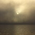 The Grey Sun by Peter Gray