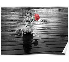 Rainy Days - Squirrel Poster