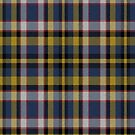 02407 Marion County, Indiana District Tartan Fabric Print Iphone Case by Detnecs2013