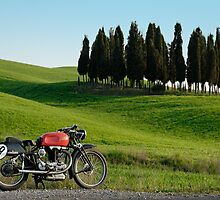 "Gilera Otto Bulloni ""Milano-Taranto"" at a Cypress forest in Tuscany by Frank Kletschkus"