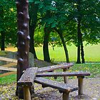 Manchester Parks 03  by david261272