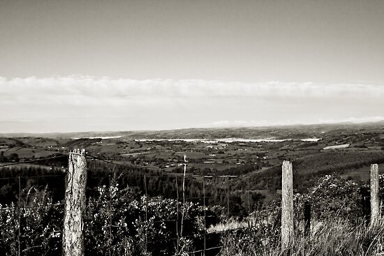 Rolling Hills of Wales by taralewisart