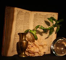 Still life with an old book by reujken
