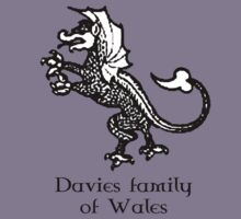 Welsh Heritage: Davies surname by Lorin Morgan-Richards