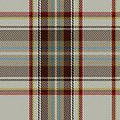 02411 Plaid Dress Diana Fashion Tartan Fabric Print Iphone Case by Detnecs2013