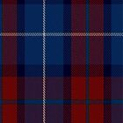 02412 Diaspora Fashion Tartan Fabric Print Iphone Case by Detnecs2013
