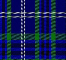 02416 Dickson (Kirkcudbrightshire) Tartan Fabric Print Iphone Case by Detnecs2013