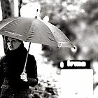 Rainy days 2 by Snapshooter
