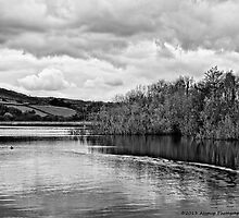 Combs Reservoir B&W by David J Knight